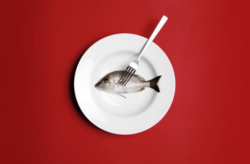 Plate「Raw Fish」:スマホ壁紙(3)