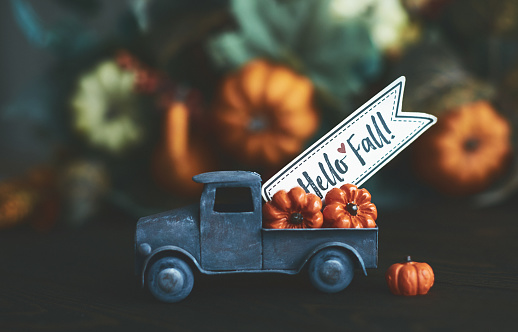 Season「Little truck with load of miniature pumpkins for fall and Thanksgiving」:スマホ壁紙(1)