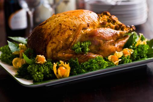 Stuffed Turkey「Roast Turkey」:スマホ壁紙(15)