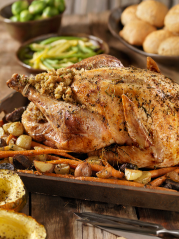 Bush Bean「Roast Turkey Dinner」:スマホ壁紙(16)