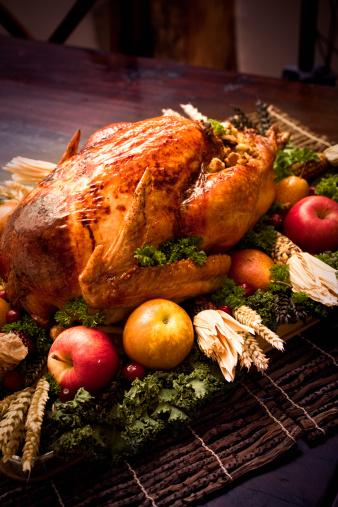 Stuffed Turkey「Roast Turkey」:スマホ壁紙(19)