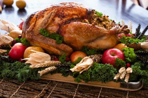 Stuffed Turkey「Roast Turkey」:スマホ壁紙(11)