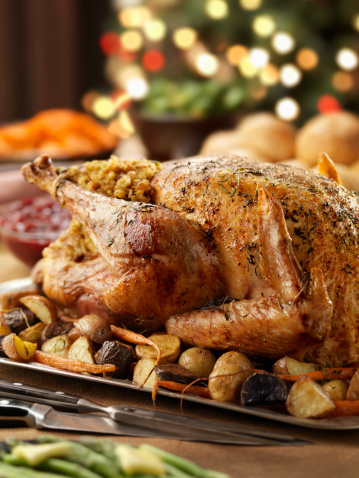 Stuffed「Roast Turkey Dinner at Christmas Time」:スマホ壁紙(6)