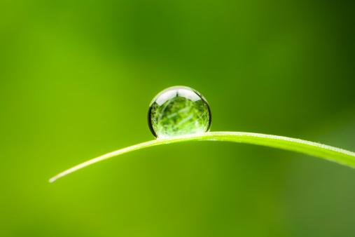 Drop「Waterdrop.  Water Drop Leaf Environmental Conservation Balance Green Nature」:スマホ壁紙(14)