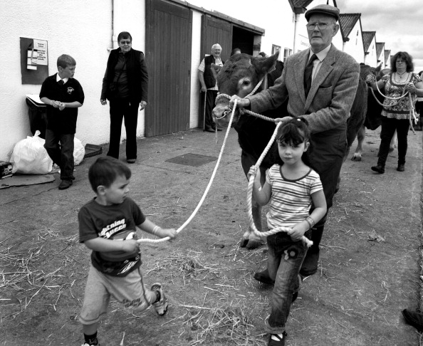 Tom Stoddart Archive「Great Yorkshire Show 2010」:写真・画像(15)[壁紙.com]