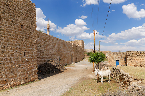 Anatolia「Turkey, Anatolia, South East Anatolia, Sirnak Province, village Haberli」:スマホ壁紙(15)