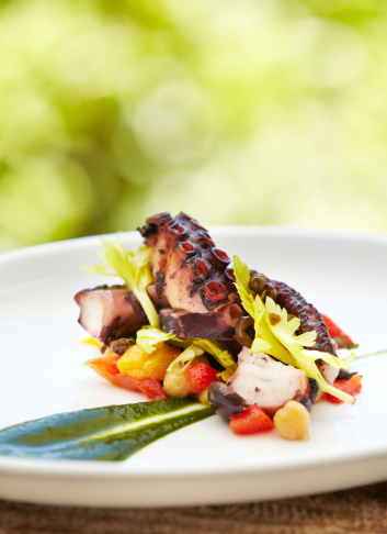 Octopus「Grilled octopus with vegetables against nature background」:スマホ壁紙(11)