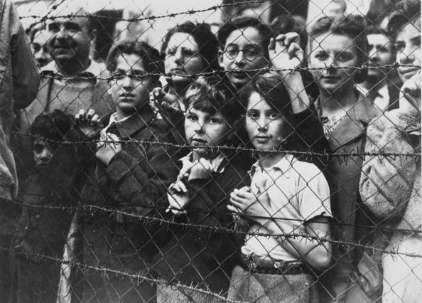 Concentration Camp「Vittel Liberated」:写真・画像(1)[壁紙.com]