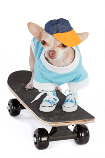 Skating「skateboard」:スマホ壁紙(9)