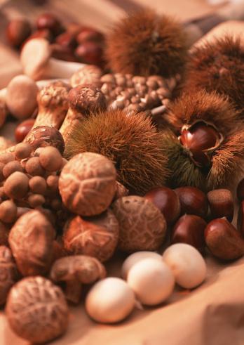 ヒラタケ「Mushroom and Chestnut」:スマホ壁紙(4)