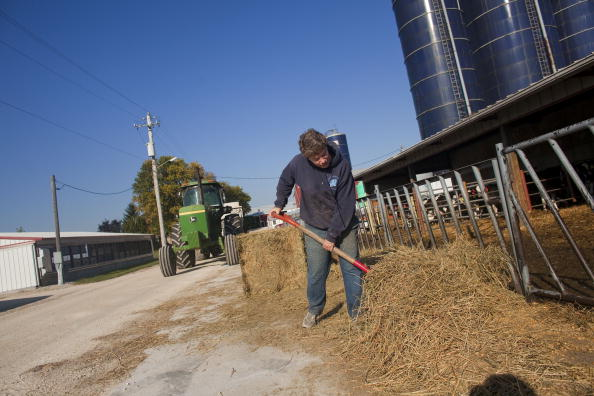 Florida - US State「U.S. Dairy Farming Still A Struggle Despite Rise In Milk Prices」:写真・画像(0)[壁紙.com]