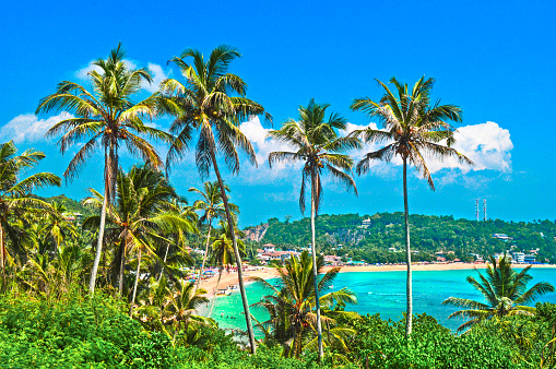 Sri Lanka「Unawatuna from Elevated view of tropical beach」:スマホ壁紙(12)