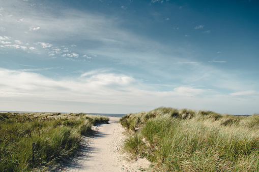 Footpath「Germany, Spiekeroog, path through dunes」:スマホ壁紙(17)