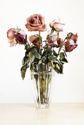 Bleached「Roses」:スマホ壁紙(13)