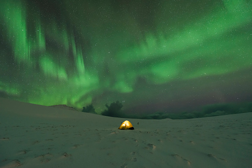 Tent「Tent in snow covered landscape with northern lights in night sky, Lofoten Islands, Norway」:スマホ壁紙(7)