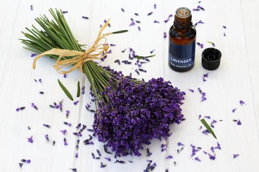 Aromatherapy Oil「Fragrant lavender and bottle of lavender oil」:スマホ壁紙(15)