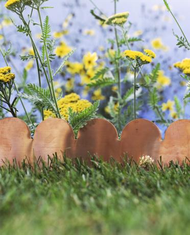 Scalloped - Pattern「Scalloped terra cotta garden edging」:スマホ壁紙(18)
