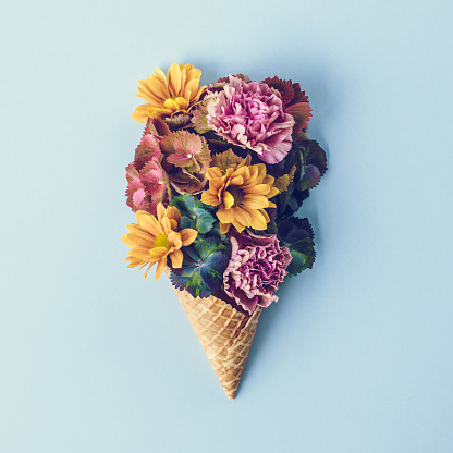 Color Image「Fresh flowers in ice cream cone still life」:スマホ壁紙(16)