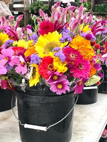 コスモス「Fresh flowers in market」:スマホ壁紙(6)