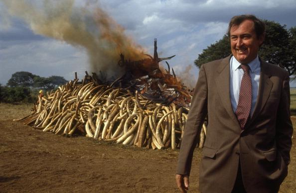 Environmental Conservation「Richard Leakey With Ivory」:写真・画像(13)[壁紙.com]