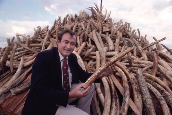 Paleontologist「Leakey With Tusks」:写真・画像(11)[壁紙.com]