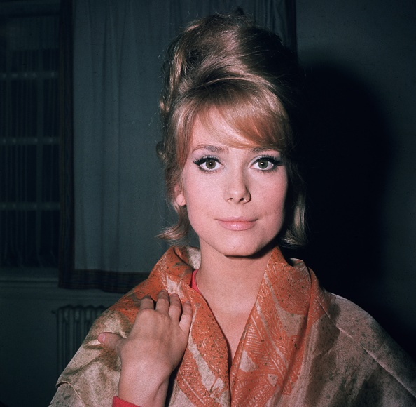 Young Adult「A Young Deneuve」:写真・画像(10)[壁紙.com]