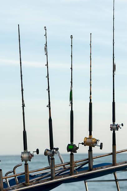 Five fishing poles in a row; sayulita mexico:スマホ壁紙(壁紙.com)