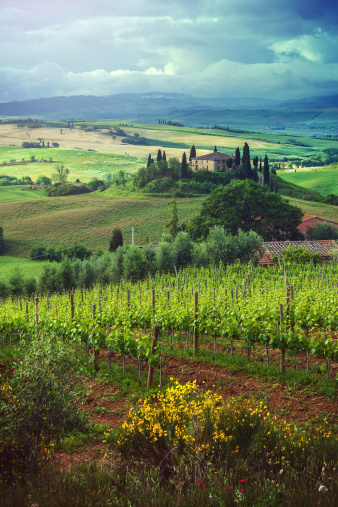 Chianti Region「Spring landscape in Tuscany」:スマホ壁紙(16)