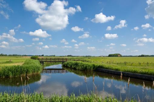 Netherlands「Spring Landscape」:スマホ壁紙(19)