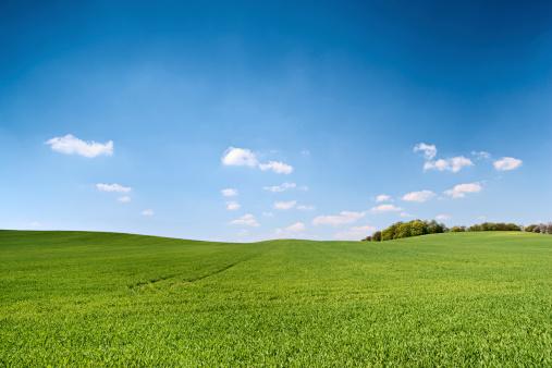 Rolling Landscape「Spring landscape」:スマホ壁紙(16)