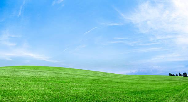 Spring landscape 79MPix XXXXL - meadow, blue sky, clouds:スマホ壁紙(壁紙.com)