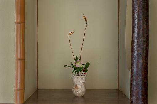 Hellebore「Ikebana, flower arrangement」:スマホ壁紙(17)