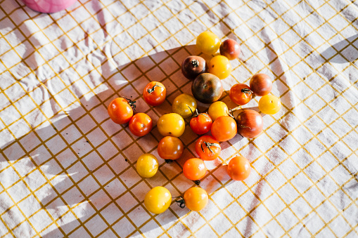 Real Life「Colourful tomatoes on table cloth in sun」:スマホ壁紙(10)