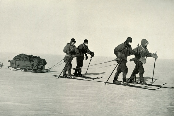 Ski Pole「The Polar Party: On The Trail」:写真・画像(19)[壁紙.com]