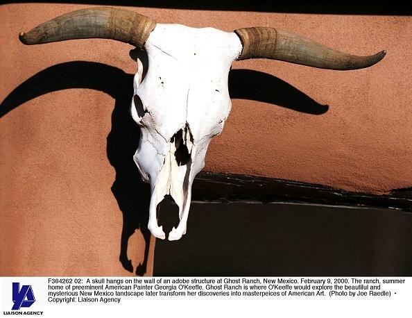 New Mexico「Georgia O''Keeffe's Ghost Ranch」:写真・画像(12)[壁紙.com]