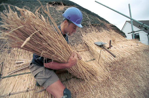 Thatched Roof「Thatching. Laying bundles on a roof using legget.」:写真・画像(13)[壁紙.com]