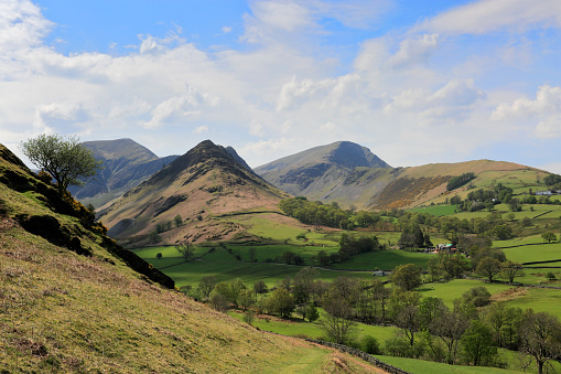 自然の景観「Summer, The Derwent Fells, Newlands valley, Lake District National Park」:スマホ壁紙(19)