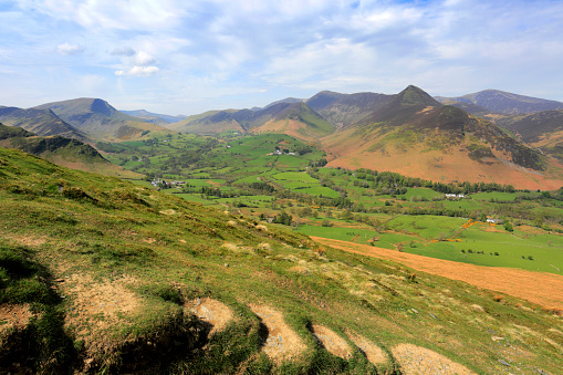 Color Image「Summer, The Newlands valley, Lake District National Park, Cumbria」:スマホ壁紙(13)