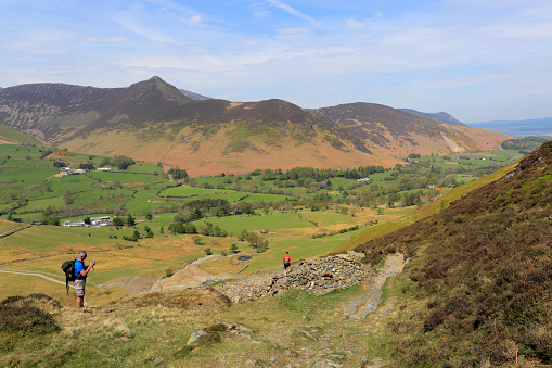 Color Image「Summer, The Newlands valley, Lake District National Park, Cumbria」:スマホ壁紙(2)