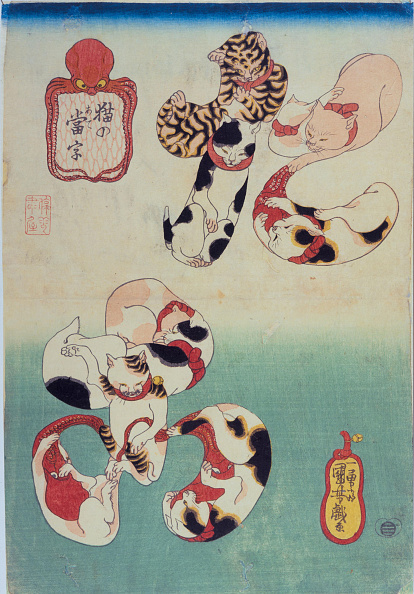 Octopus「Cats Forming The Caracters For Octopus」:写真・画像(15)[壁紙.com]