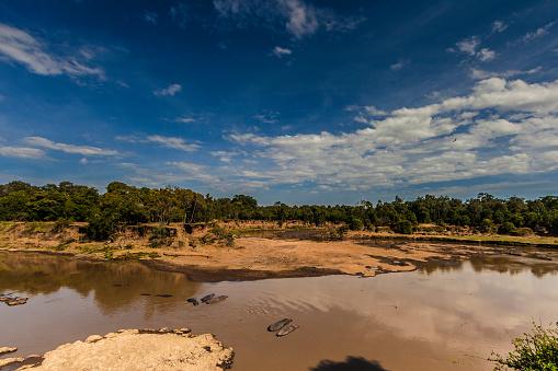 カバ「Hippos sleeping in Mara River.」:スマホ壁紙(18)