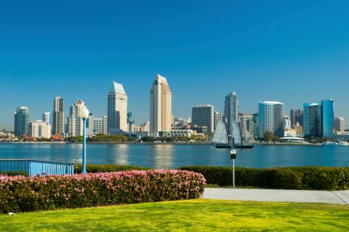 Bay Horse「San Diego skyline and park」:スマホ壁紙(5)