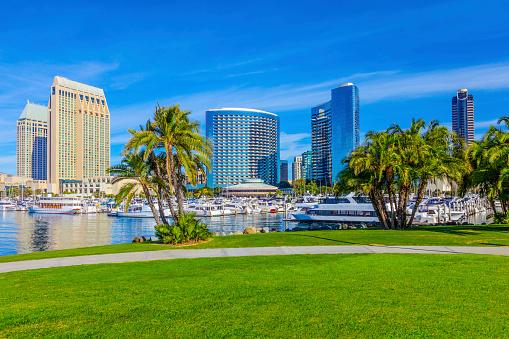 San Diego「San Diego Skyline, California」:スマホ壁紙(14)