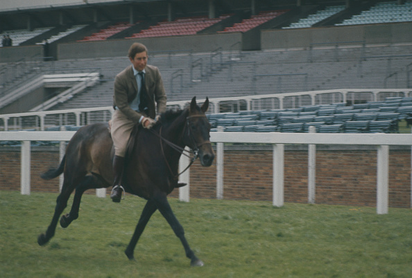 Horse「Racing Royals At Ascot」:写真・画像(3)[壁紙.com]