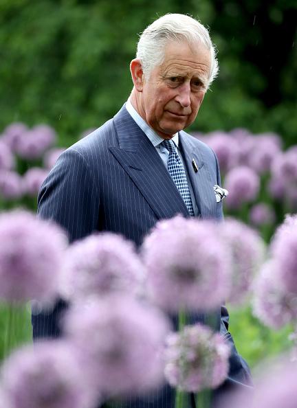 上半身「The Prince Of Wales Visits Kew Gardens」:写真・画像(11)[壁紙.com]