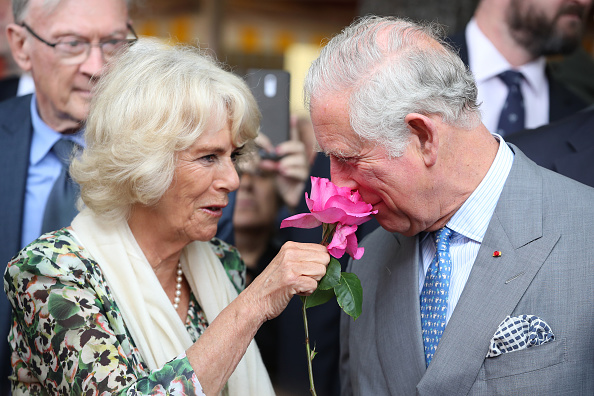 Camilla - Duchess of Cornwall「Prince Of Wales And Duchess Of Cornwall Visit France」:写真・画像(14)[壁紙.com]