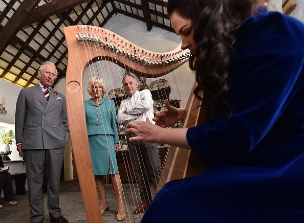 爪弾く「Prince Of Wales And Duchess Of Cornwall Visit Ireland and Northern Ireland」:写真・画像(19)[壁紙.com]