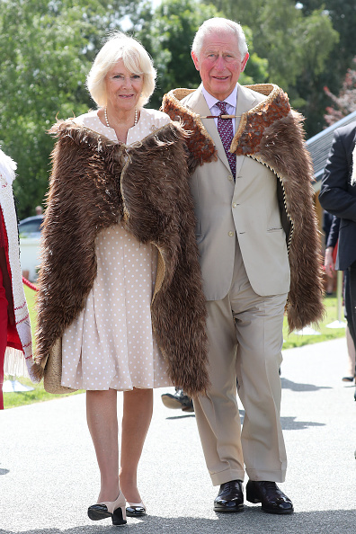Visit「The Prince of Wales & Duchess Of Cornwall Visit New Zealand - Day 6」:写真・画像(14)[壁紙.com]