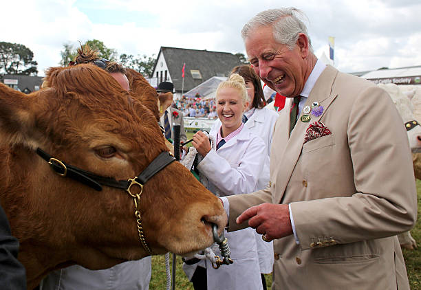 Prince Charles, Prince of Wales And Duchess Of Cornwall Attend The Royal Welsh Show:ニュース(壁紙.com)
