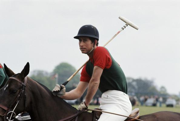 Polo「Charles At Polo」:写真・画像(5)[壁紙.com]